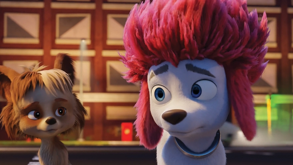 100 % Loup film animation