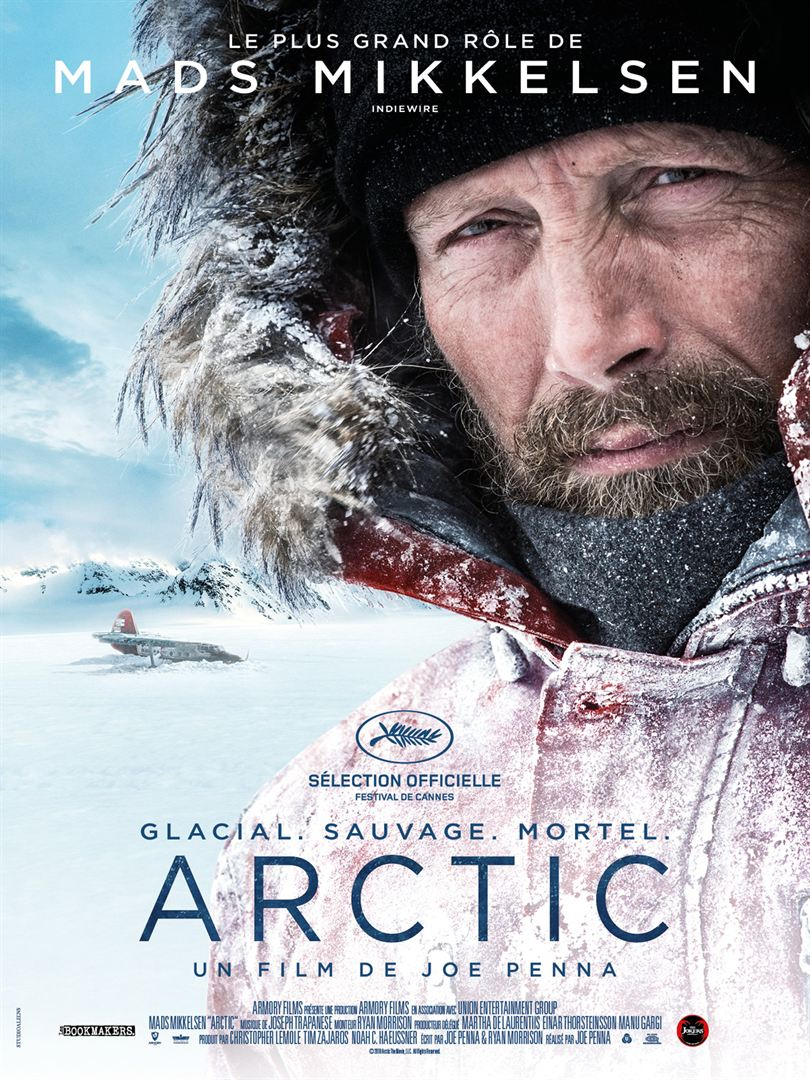 Arctic film affiche