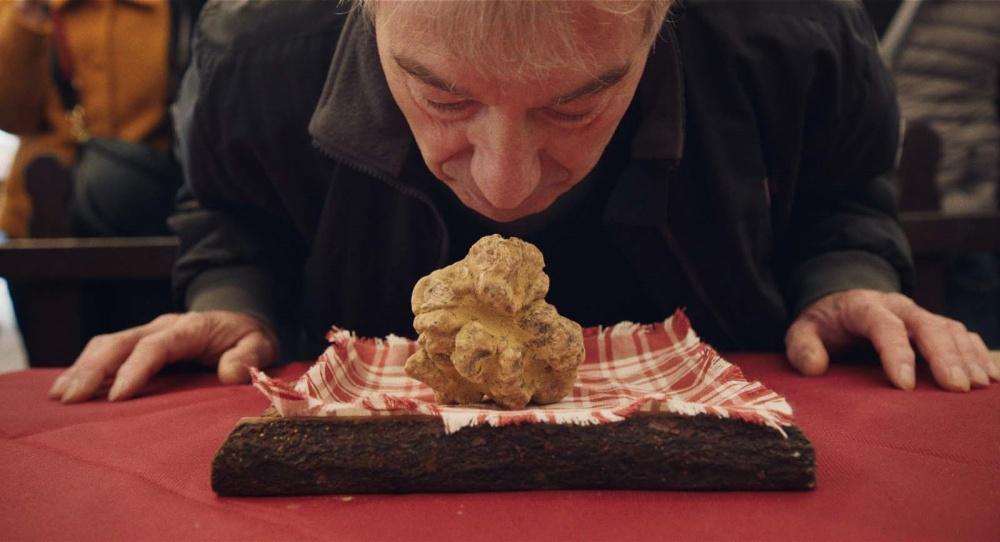 Chasseurs de truffes film documentaire documentary movie