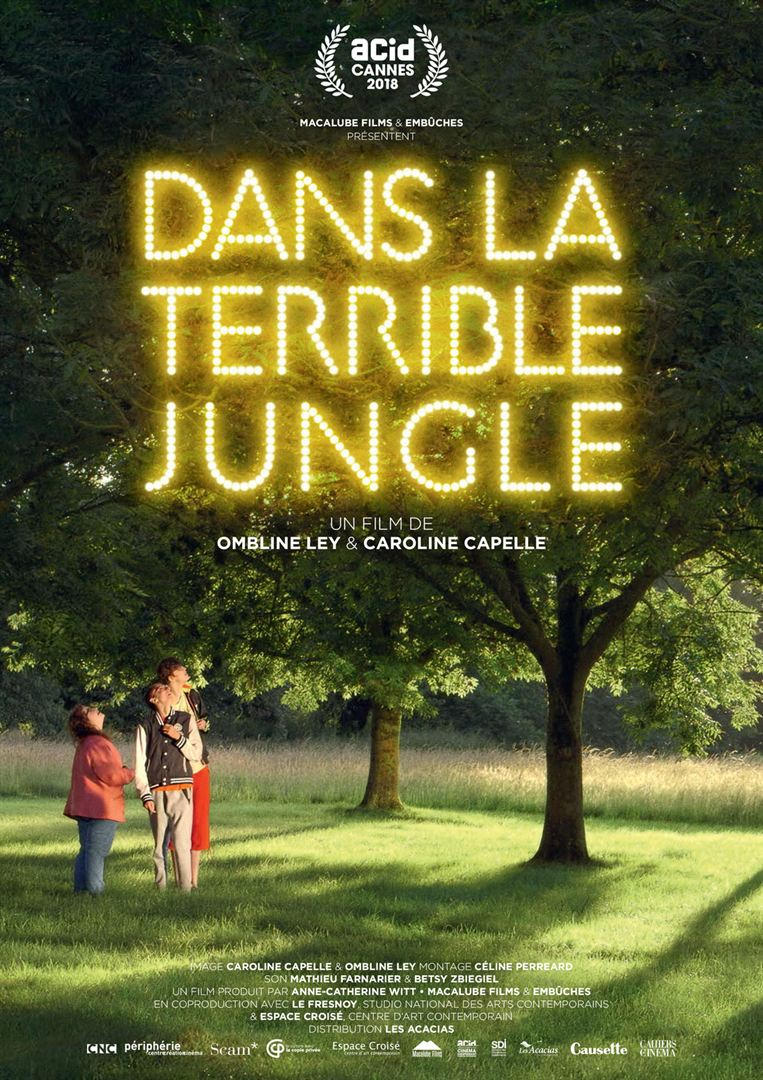 Dans la terrible jungle film affiche