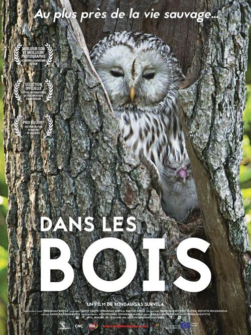 Dans les bois documentaire affiche