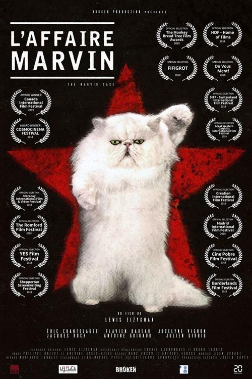 L'affaire Marvin film mocumentaire affiche