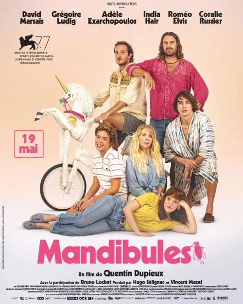 Mandibules film affiche réalisé par Quentin Dupieux