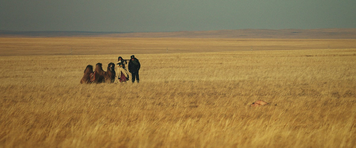 Ondog film image