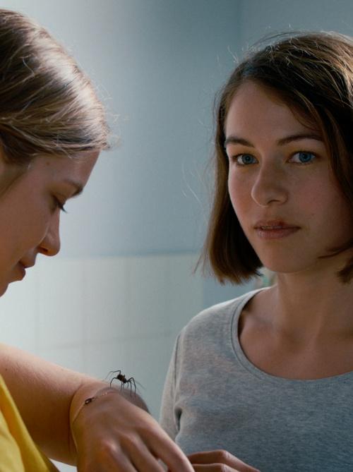 The Girl and the Spider film affiche provisoire réalisé par Ramon Zürcher et Silvan Zürcher