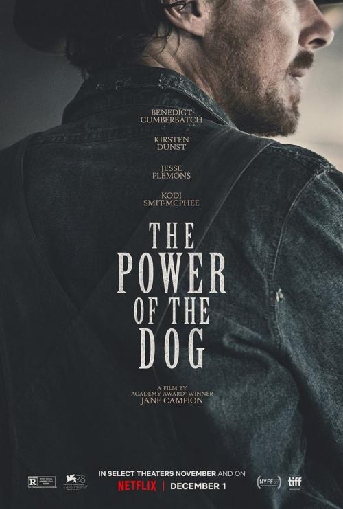 The Power of the dog film affiche provisoire réalisé par Jane Campion