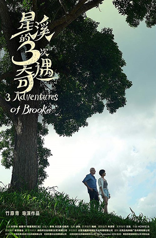 Three adventures of Brooke film affiche