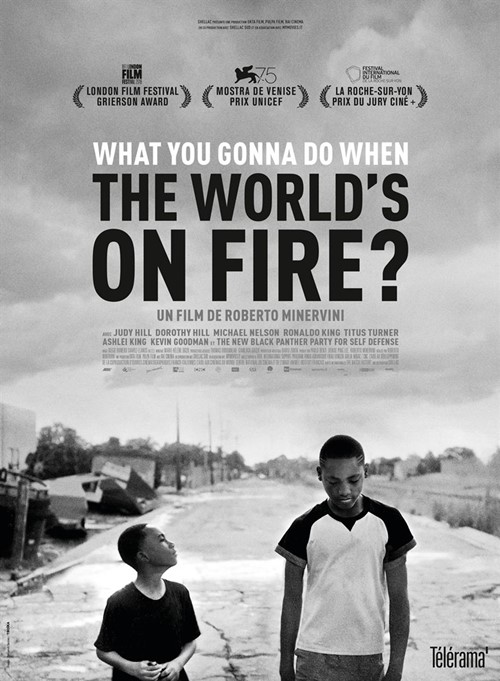 What you gonna do when the world is on fire ? film documentaire affiche